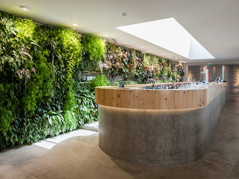 For the vertical garden at Espaço Espelho d'Água in Lisbon, Vertical Garden Design wrapped greenery around all four walls of the kitchen at the center of the space.