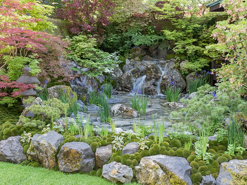 The waterfall in the central pond of Kazuyuki Ishihara's Hospitality Garden at the 2018 Chelsea Flower Show in London is surrounded by Japanese maples, and encourages a feeling of timelessness and eternity.