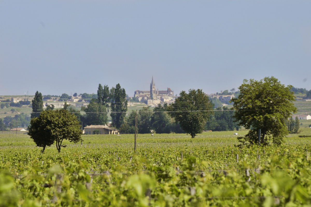 """A distant view of the medieval village of Saint-Émilion. The village forms part of the wider """"Jurisdiction of Saint-Émilion,"""" which was designated as a cultural landscape by the UNESCO World Heritage Centre in 1999."""