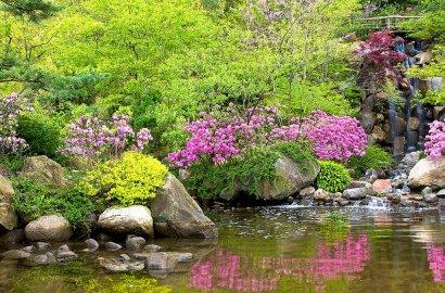How to Design an Asian-Inspired Garden