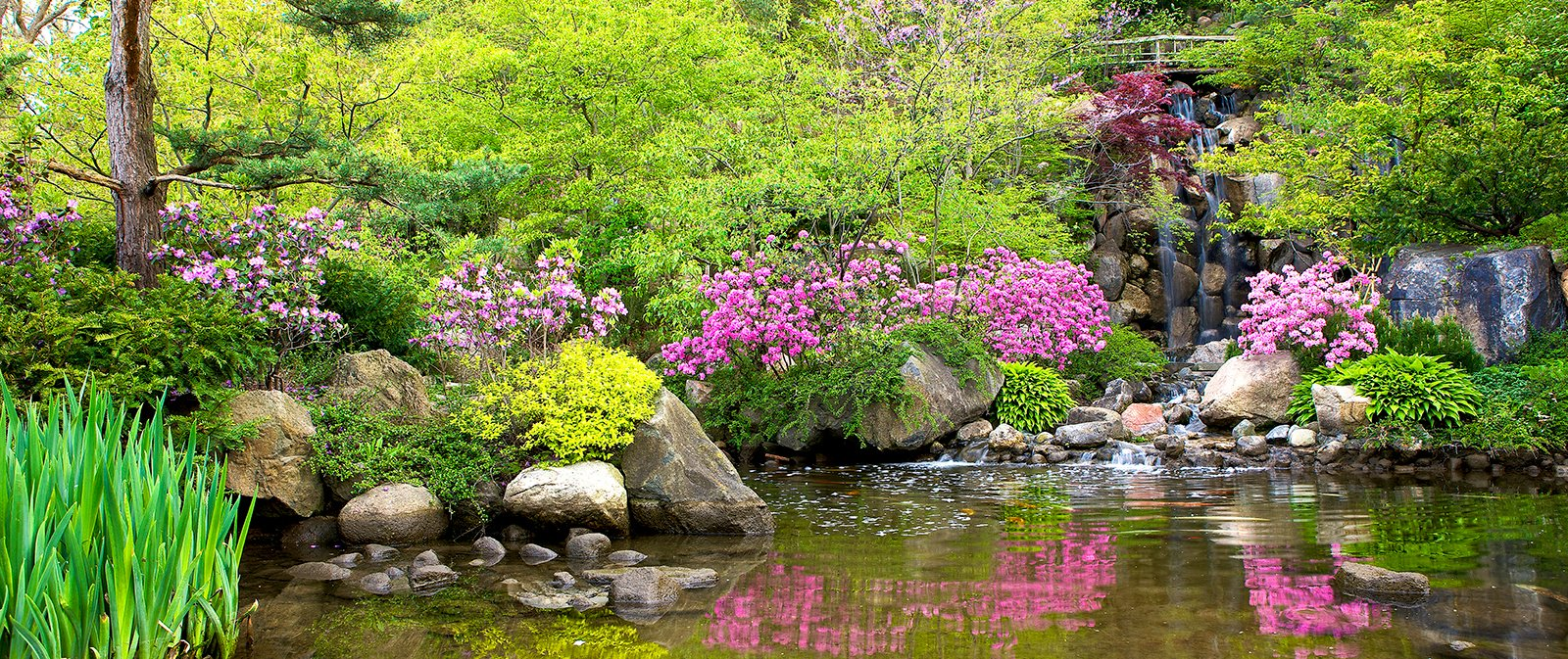 How To Design An Asian Inspired Garden