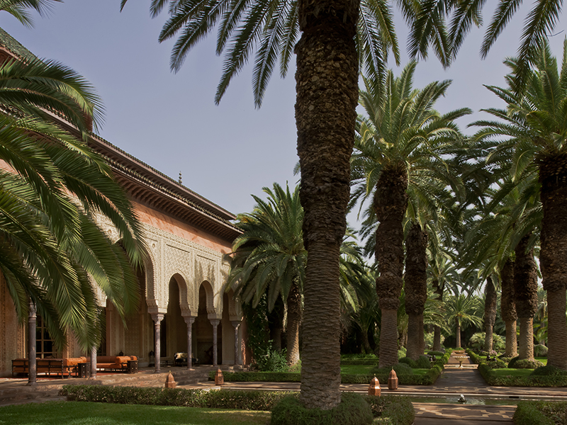 Marrakech property palm trees