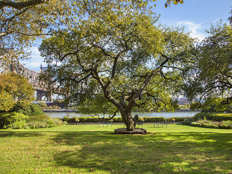 Sutton-Place-gardens-river