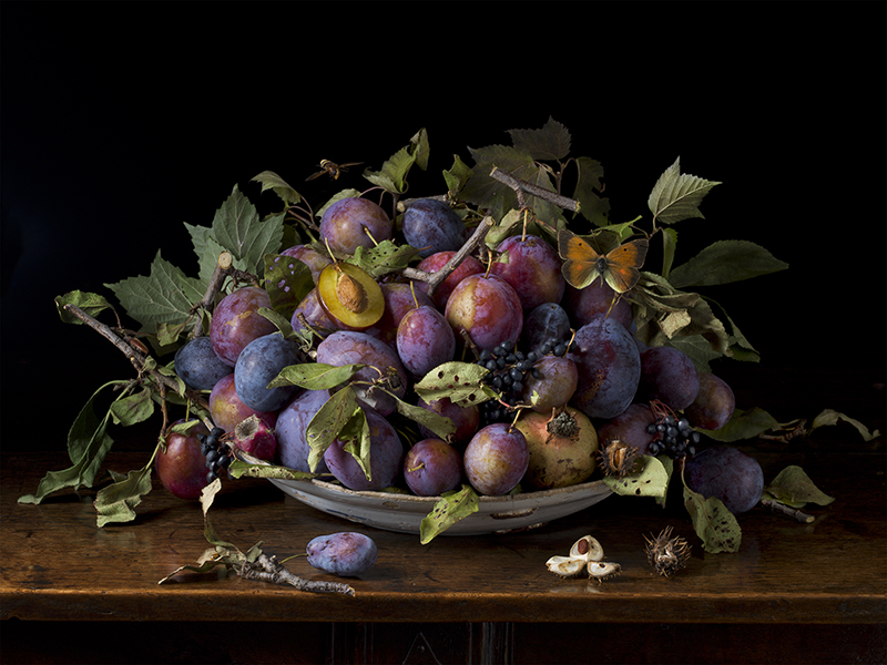 Italian Plums After GG 2015 by Paulette Tavormina