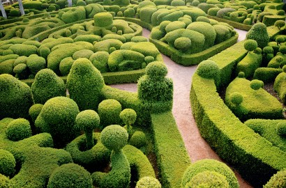 Organic Artistry: How Topiary Can Transform Your Garden Design