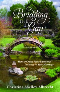 Bridging the Gap's book cover
