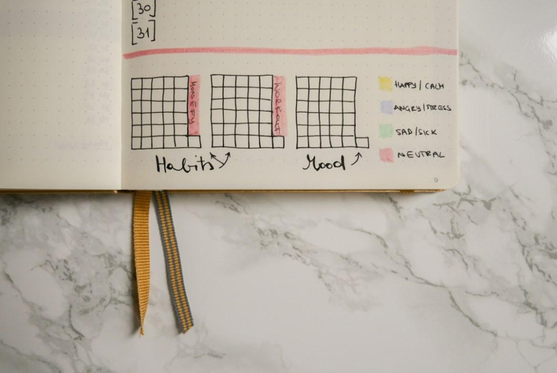 Januar Bullet Journal Setup