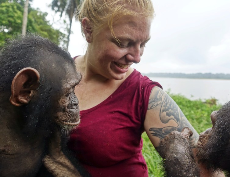 A woman in the middle, with two chimpanzees on either side, look at her tattooed arm