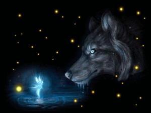 Lupo Magico e Fata Stregata