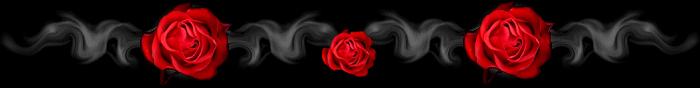barra_titolo_rose