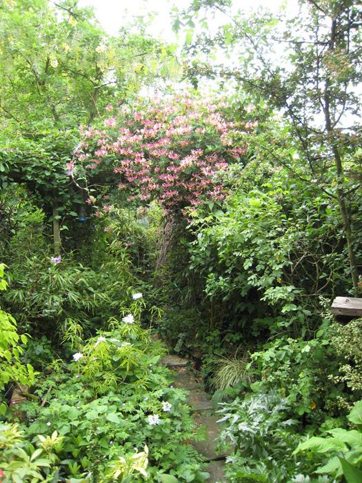 Christine Lees Garden Design Wildlife Friendly Garden Design
