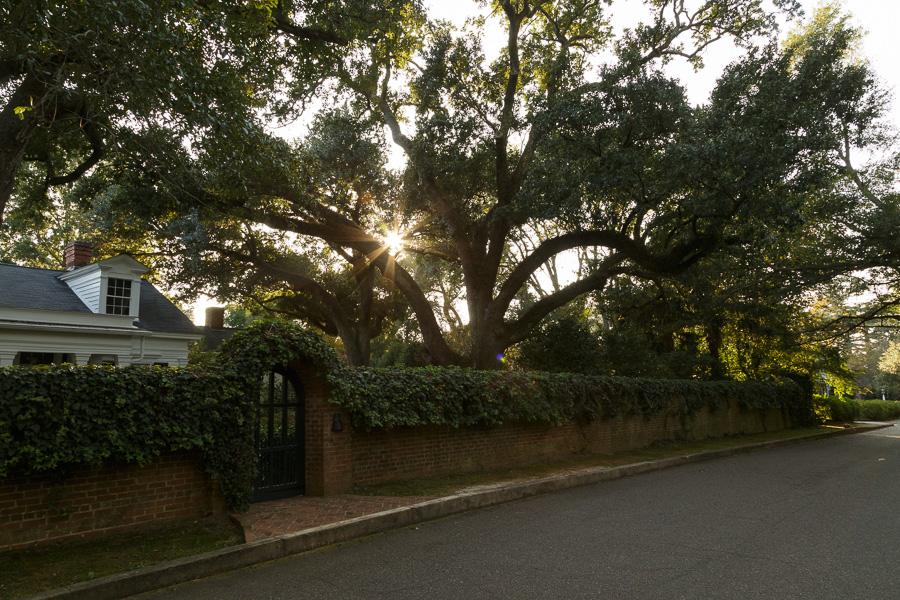 Sunset on Easy Street, Aiken, South Carolina