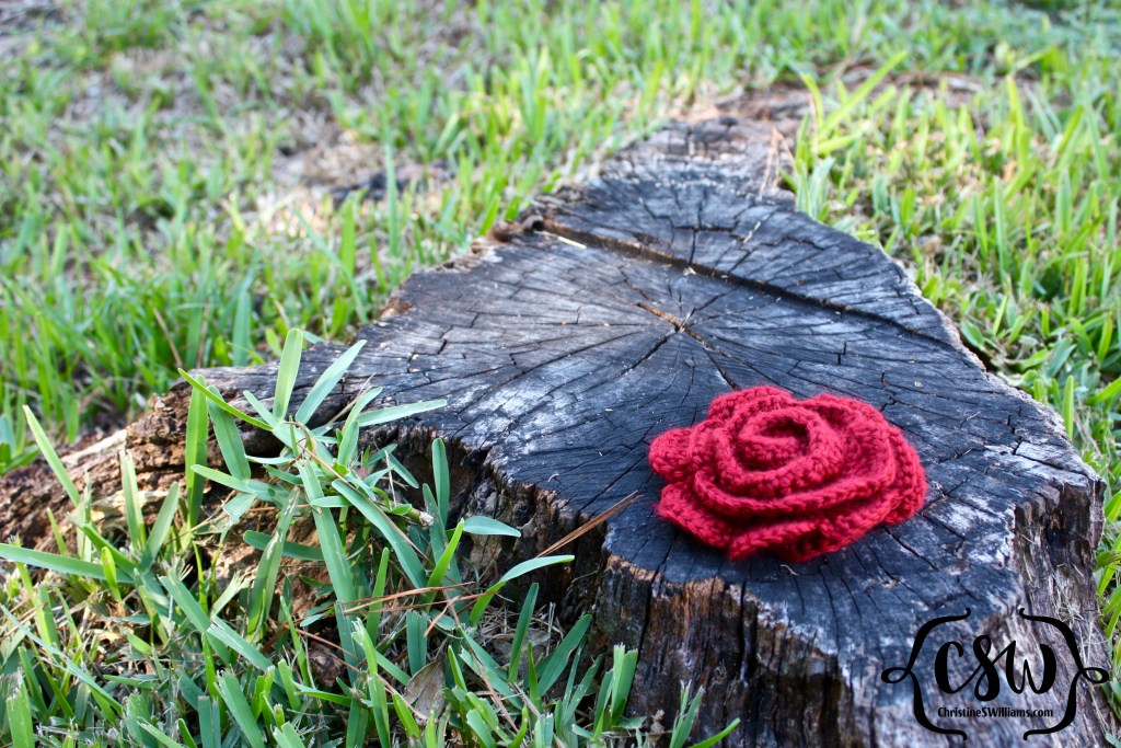Rose Completed Stump