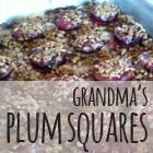 Grandma's Plum Squares
