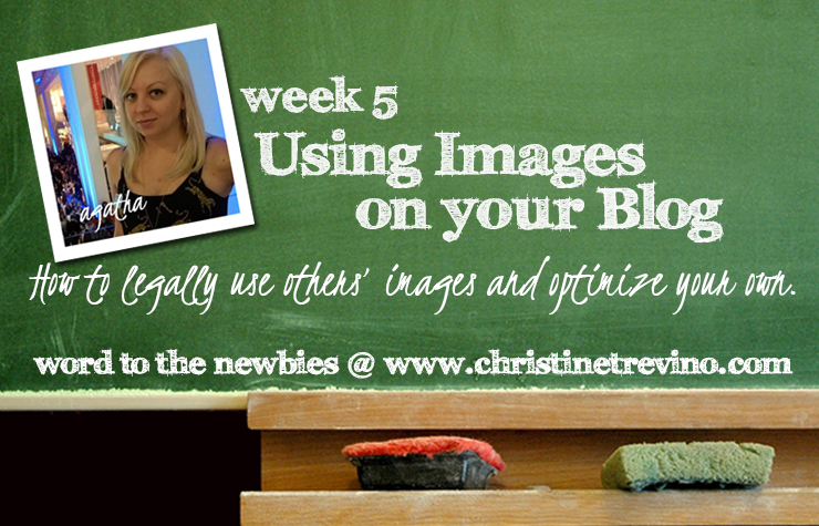 Using Images on your Blog | Word to the Newbies | Agatha Kubalski