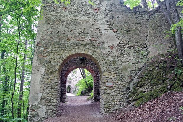 Burg Rauhenstein