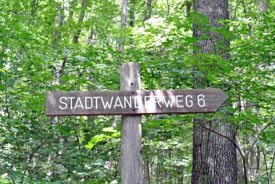 Wiener Stadtwanderweg 6 Zugberg Maurer Wald
