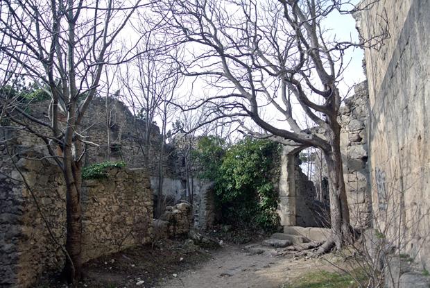 Burg Rauheneck