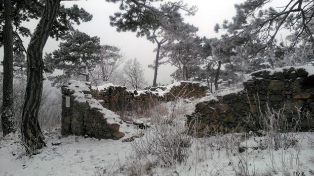 Kalenderberg Ruine Pfefferbüchsel
