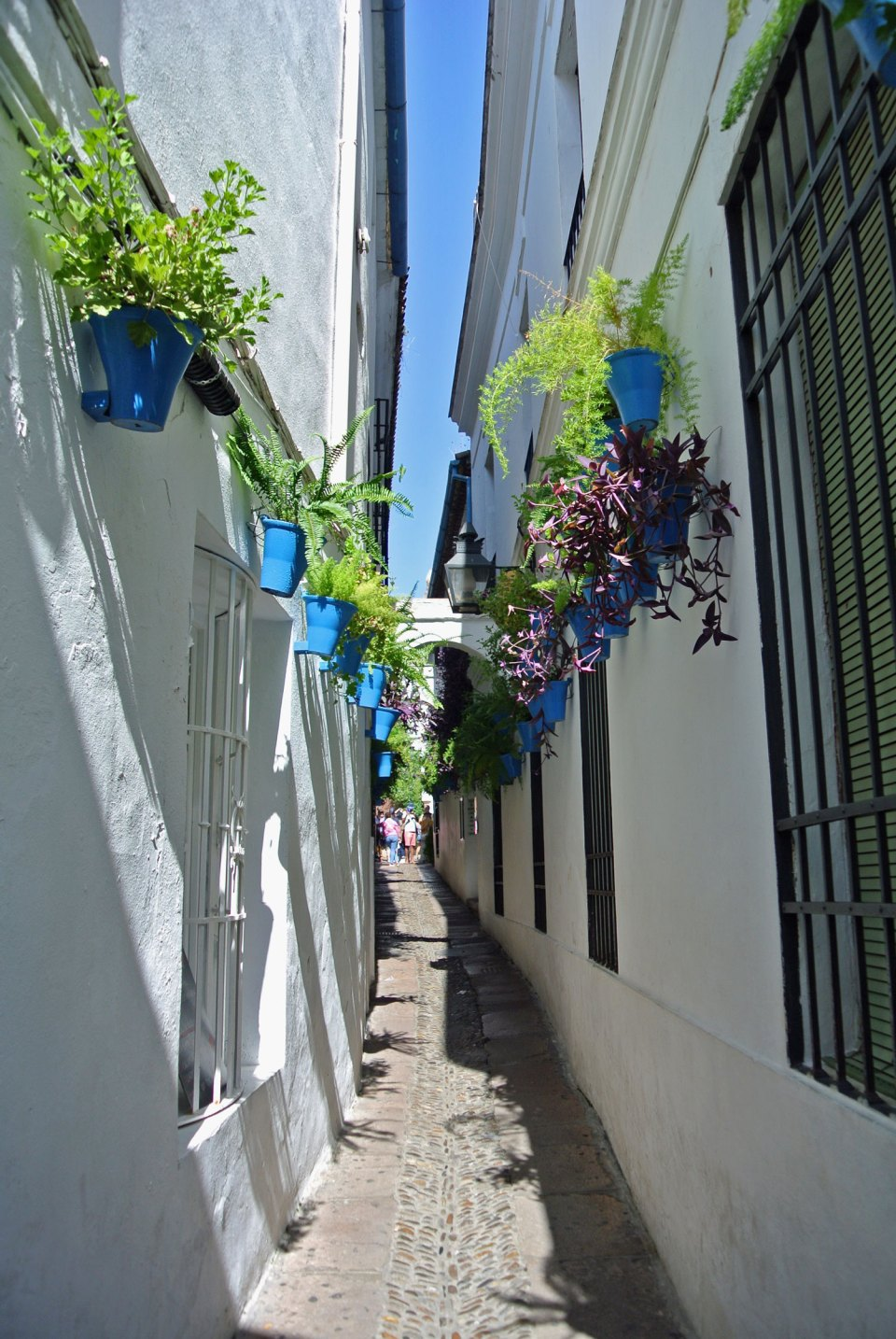Calleja de las Flores Cordoba Andalusien