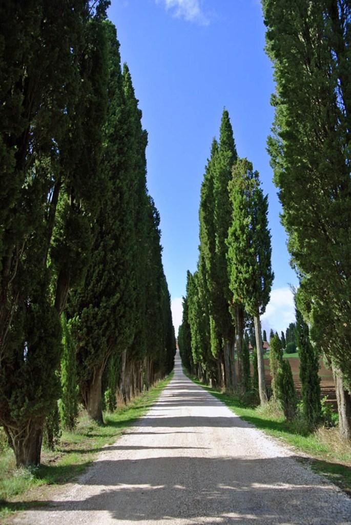 Chianti Toskana