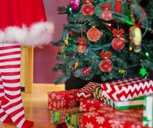 Xmas tree and traditions