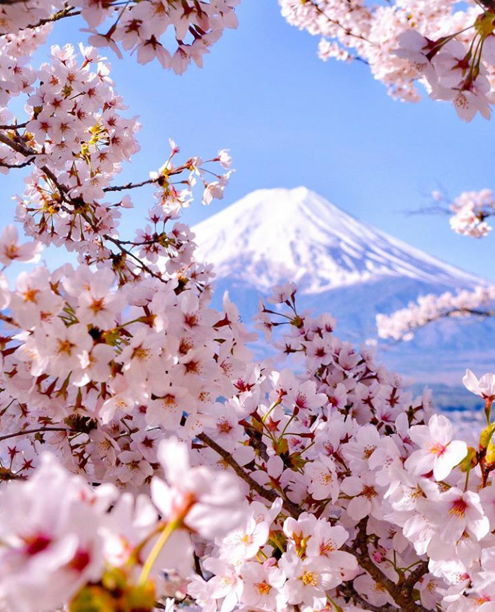 Mount Fuji - 6 Must See Japan Tourist Attractions - Christobel Travel