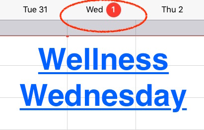 Wellness Wednesday Intro