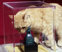 """Feline IMFer Rusty recovers a stolen jade artifact in """"The Seal"""""""