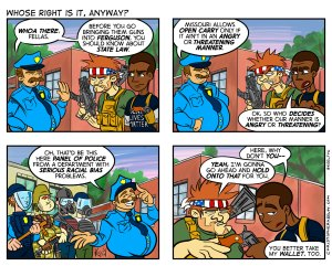 Whose Right - Comic by Christopher Keelty