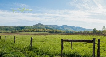 Cades Cove Photos