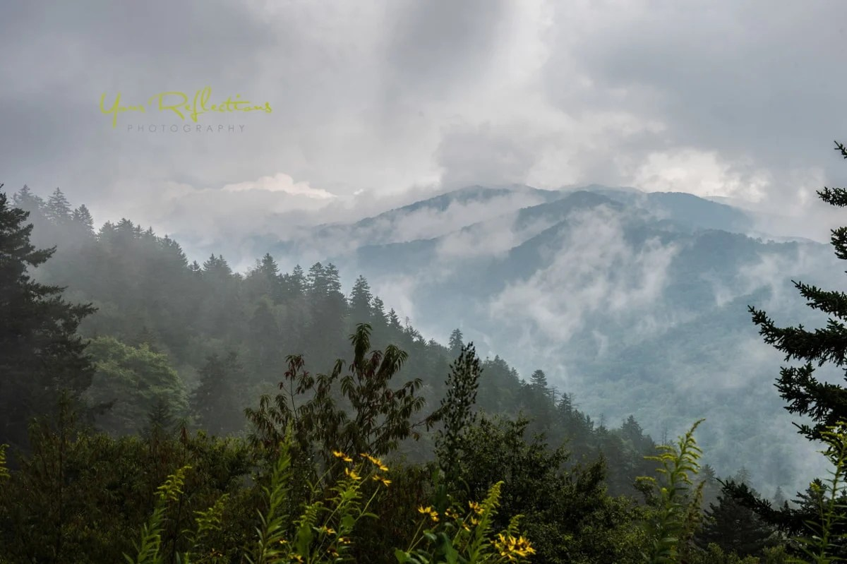 When Is The Best Time To Visit The Smoky Mountains