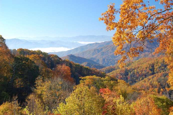 5 Best Places To See Fall Colors In The Smoky Mountains