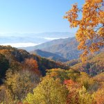 The 5 Best Places to See Fall Colors in the Smoky Mountains