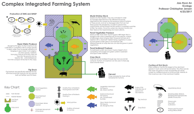 Complex Integrated Farming System © Jae-Hyun An (Project Summary)