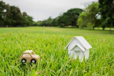 Your garden – Your Wealth Coach