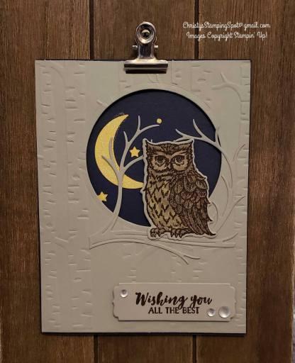 Facebook Live Still Night Owl card