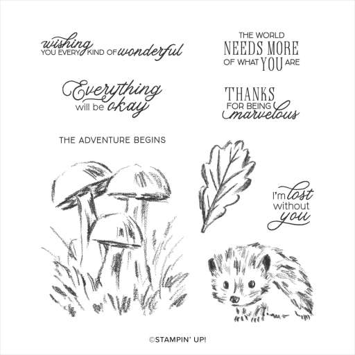 Shop now link to the Walk In The Woods Stamp Set in Christy's Online Store