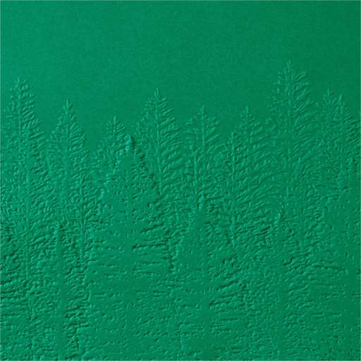 Shop now link to the Evergreen Forest 3D Embossing Folder in Christy's Online Store
