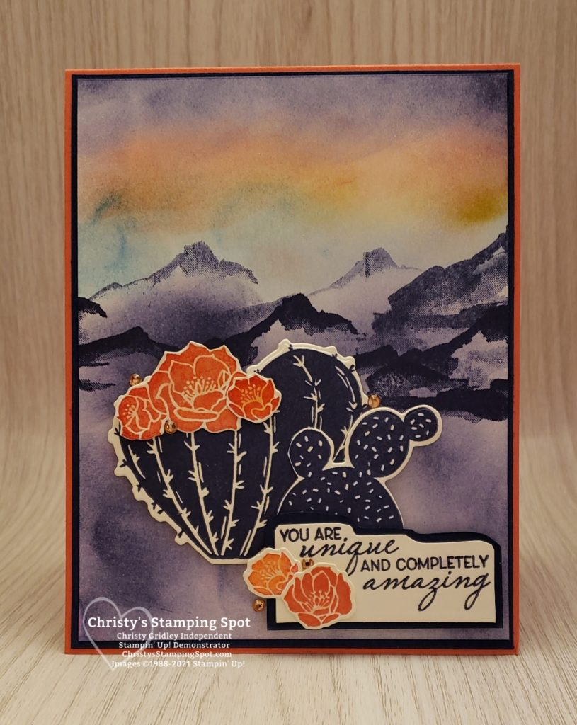 Stampin' Up! Flowering Cactus Product Medley, Snow Front stamp set, Friends Are Like Seashells stamp set, and Blending Brushes. #FloweringCactus