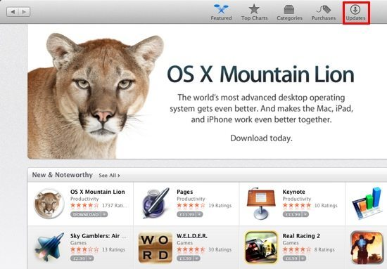 Os x mountain lion download free full version