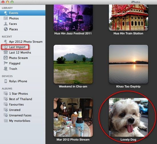 iPhoto Step 4 - Imported