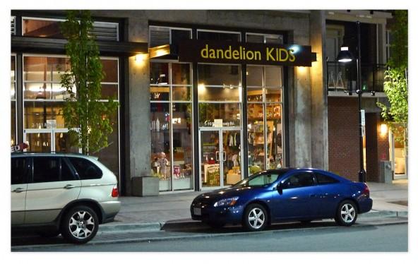 dandelion-pm-storefront01-hg