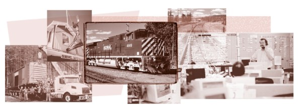 Detail of one of the composite images built using 2 inks (but not a duotone).