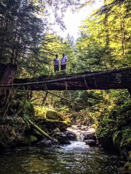 Derek and I up on the tree bridge.