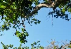 Nicaragua Honeymoon photos 011