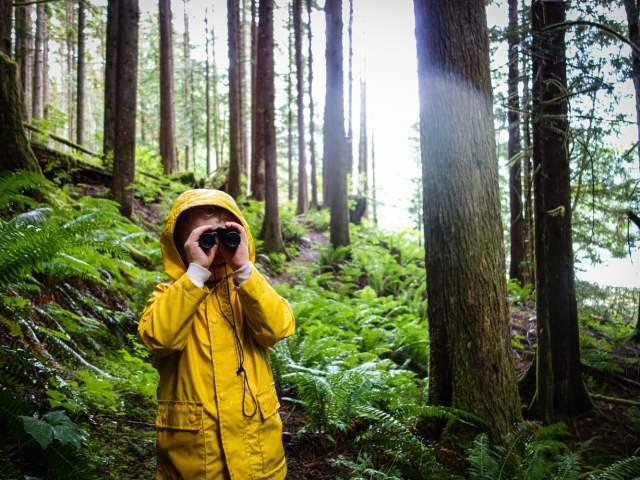 C looks through the binoculars on a rainy walk through a forest along a lake.