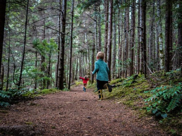 The kids running away from me on a hike at Chilliwack Lake.