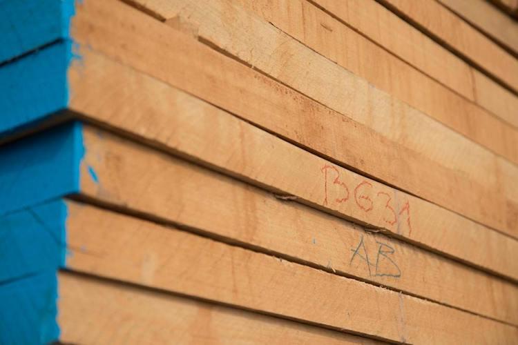 توريد-جميع-انواع-خشب-الزان