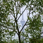 Toronto Island CN Tower